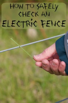How to Safely check an electric fence