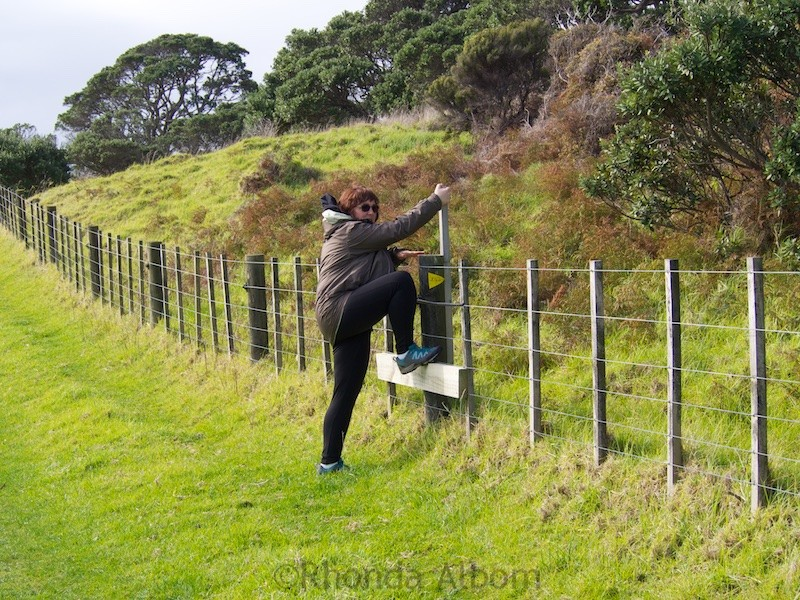 Using a stile to climb over the electric fence in Shakespear Park Auckland New Zealand