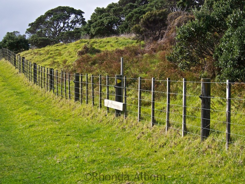 Electric Fence in Shakespear Park Auckland New Zealand
