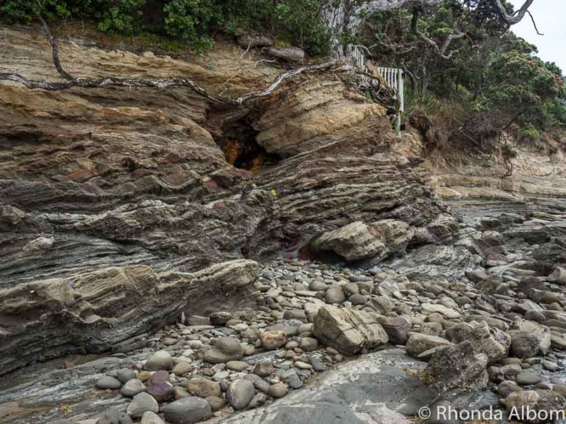 Cliffs and rock formations at Pink Beach in Shakespear Park Auckland New Zealand