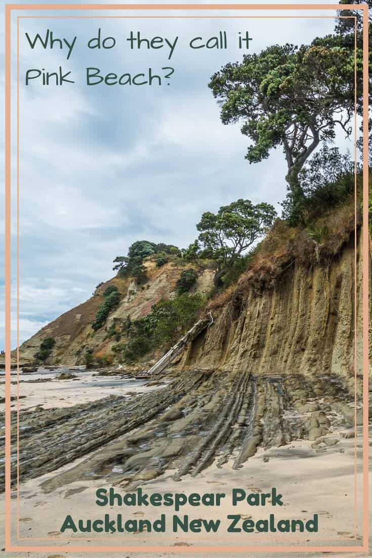 Find out why this Auckland Regional Park beach is called Pink Beach and see photos of baby seagulls by reading the article.