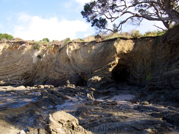 Interesting patterns on the cliffs of Pink Beach seen while coastal hiking in Shakespear Park Auckland New Zealand