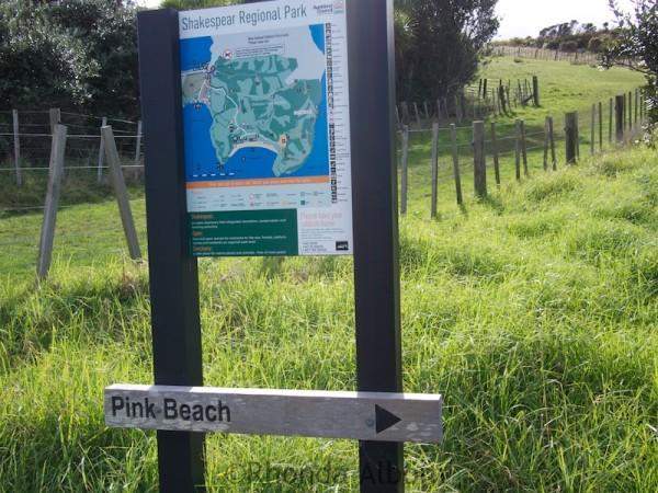 Sign to Pink Beach in Shakespear Park Auckland New Zealand
