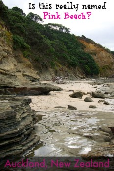 Are you wondering why this Auckland New Zealand beach is named Pink Beach