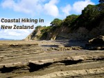 Coastal Hiking: Interesting Rock Formations in New Zealand