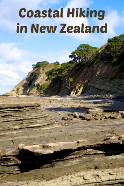 Coastal Hiking in New Zealand