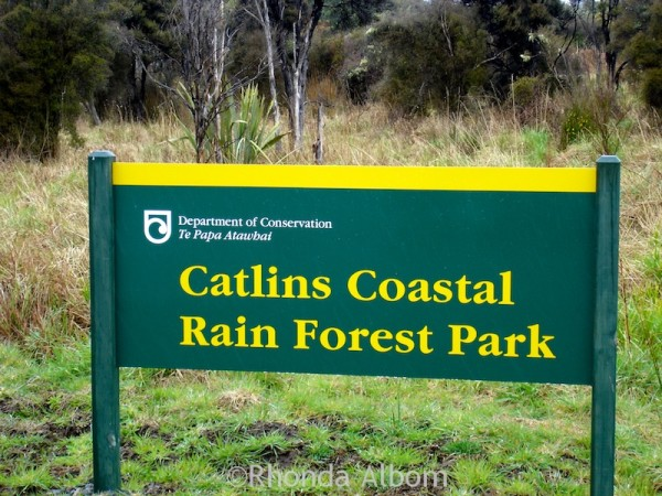 Entering the Catlins, a subtropical rainforest in New Zealand