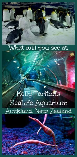Kelly Tarltons