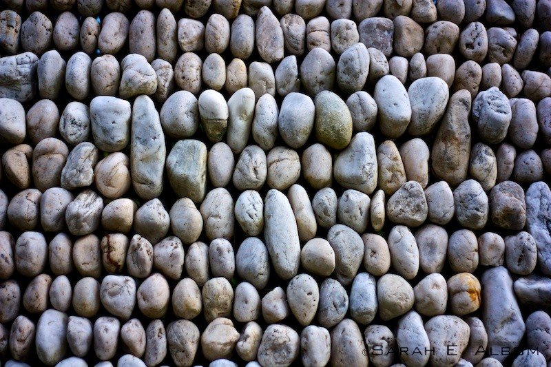 A wall of rocks at the Royal Botanical Gardens in Sydney, Australia. Copyright Sarah E. Albom 2015; for more photos of Sydney, visit the blog.