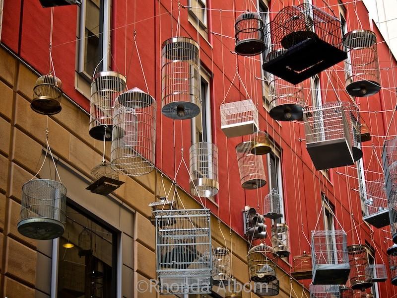 Bird cage artwork in Sydney Australia