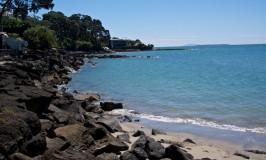 Stunning Coastal Walk Over Volcanic Rock: Takapuna to Milford