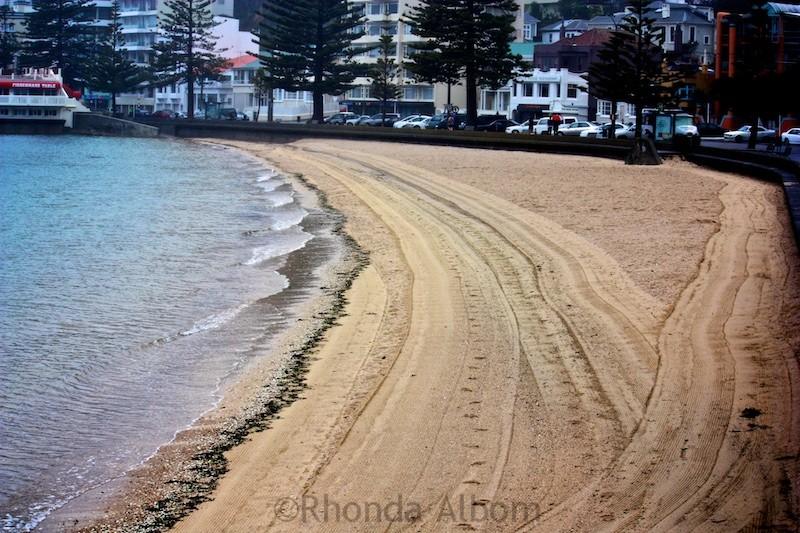 Oriental Bay Beach in Wellington New Zealand