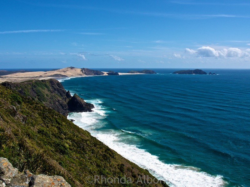 We drove from Auckland to Cape Reinga