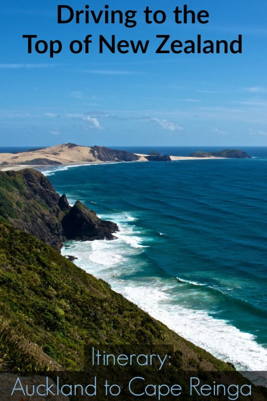 Itinerary driving to the top of New Zealand from Auckland to Cape Reinga