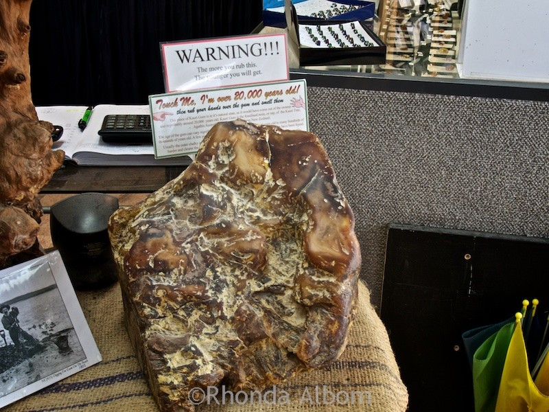 A large piece of New Zealand amber at Gumdiggers Park in Northland