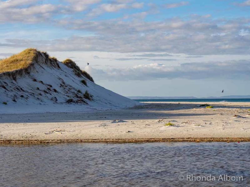 White Sand Beach Northland on Aupouri Peninsuala New Zealand.