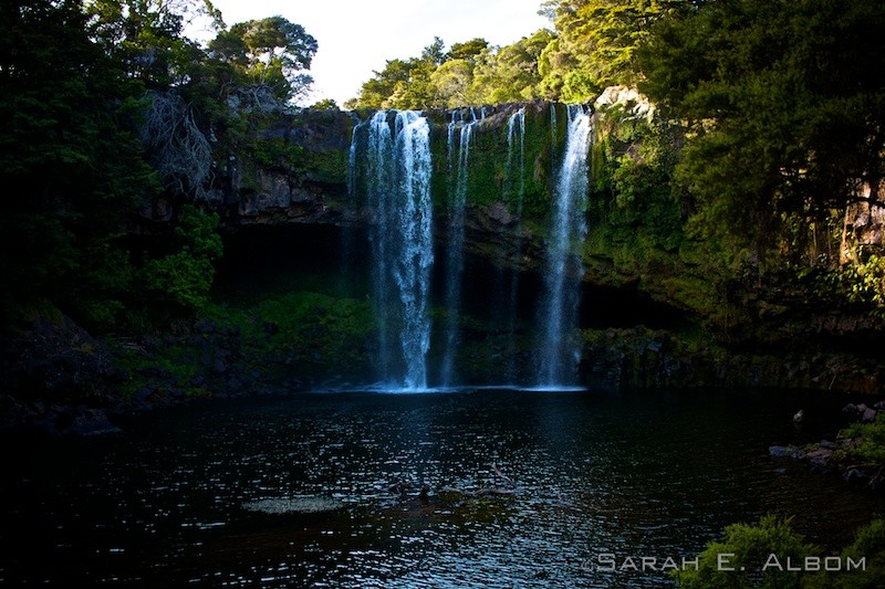 Rainbow Falls, Kerikeri, Northlands, New Zealand photo by Sarah Albom