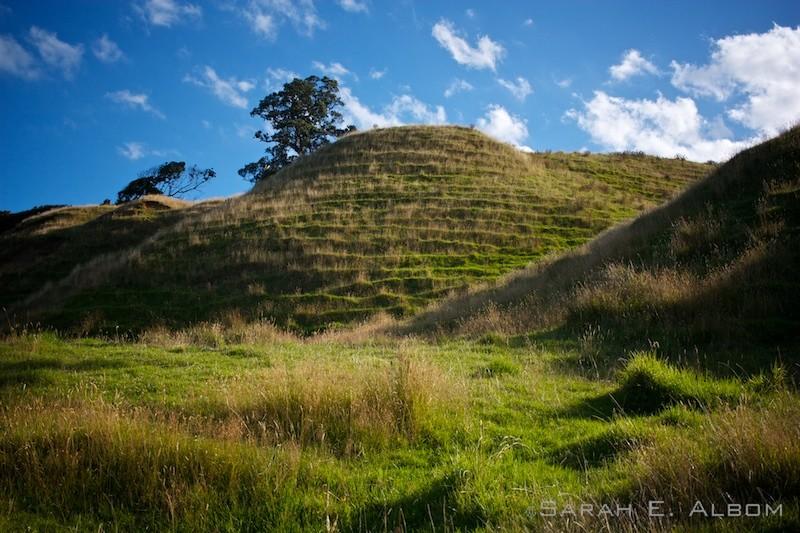 Hills surrounding the campsite at Te Muri in Mahurangi West, Auckland, New Zealand. Copyright Sarah E. Albom 2016; for more photos of Mahurangi West, visit the blog