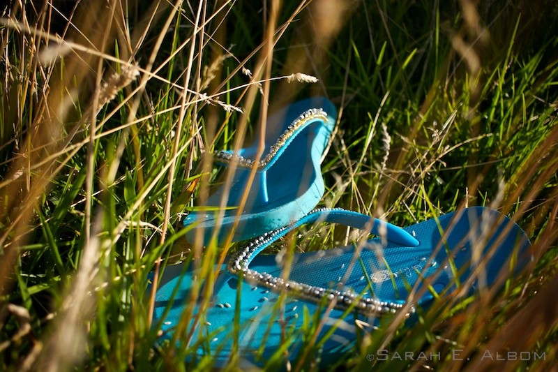 Close up of the jandals in the grass on the hills surrounding the campsite at Te Muri in Mahurangi West, Auckland, New Zealand. Copyright Sarah E. Albom 2016; for more photos of Mahurangi West, visit the blog
