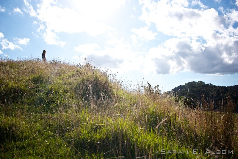 Silhouette looking out over the hills surrounding the campsite at Te Muri in Mahurangi West, Auckland, New Zealand. Copyright Sarah E. Albom 2016; for more photos of Mahurangi West, visit the blog