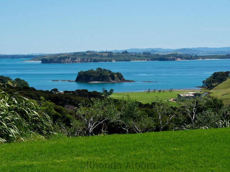 Looking out from Cable Bay Vineyard on Waiheke Island outside of Auckland New Zealand