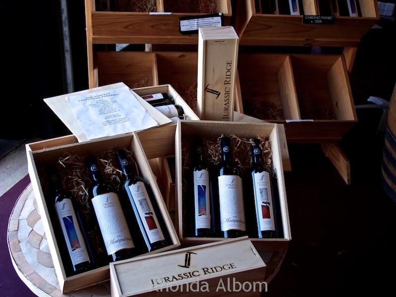 Jurassic Ridge Vineyard and Winery on Waiheke Island outside of Auckland New Zealand