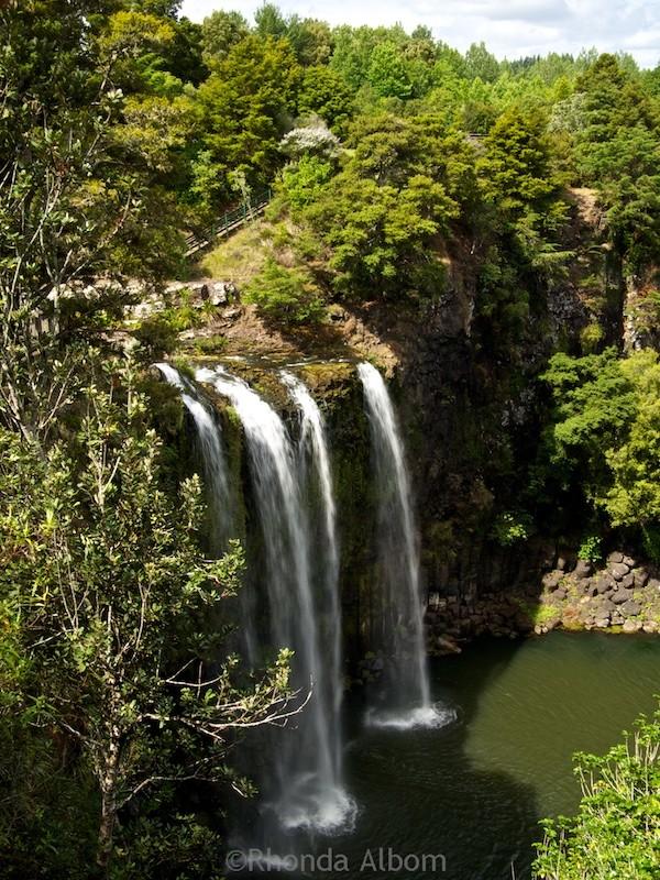 Whangarei Falls in Whangarei New Zealand