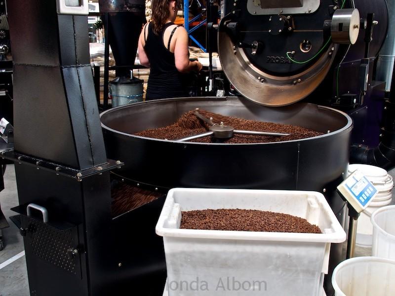 Coffee roasting at Mojo Roastery in Wellington New Zealand