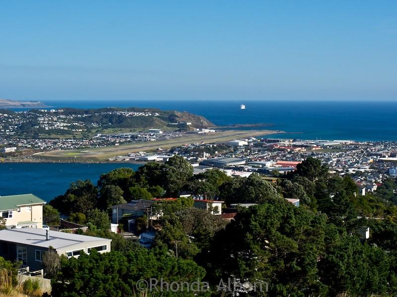 View from the top including the airport after hiking Mount Victoria in Wellington New Zealand