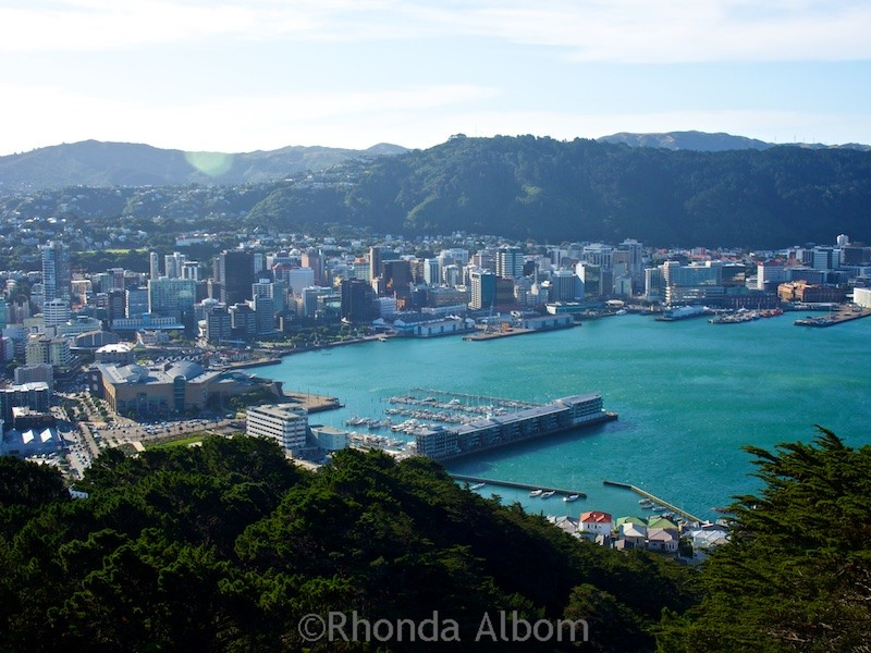 View from the top after hiking Mount Victoria in Wellington New Zealand