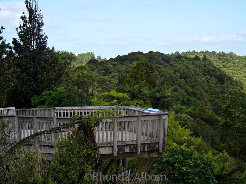 One of the viewing platforms at the Arataki Visitor Centre in the Waitakere Ranges, Auckland, New Zealand