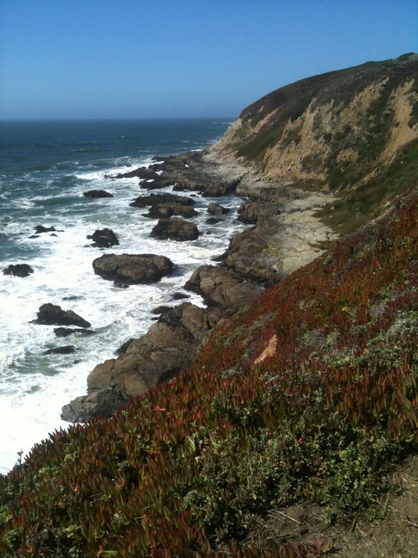 California Coast North of San Francisco at the Sonoma County State Beach. <br>Photo Credit: Megan MacNee of Traveling Nine to Fiver