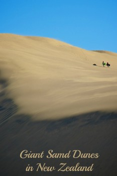 Giant Sand Dunes at Te Paki, Northland, New Zealand