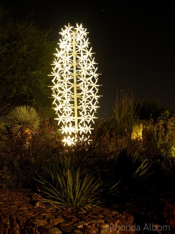 Saguaro made of light in the Bruce Munro Sonoran Light at the Desert Botanical Garden in Phoenix Arizona