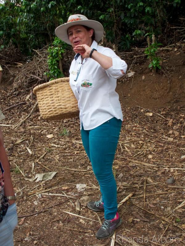 Coffee picker at the Espiritu Santo Coffee Plantation in Costa Rica