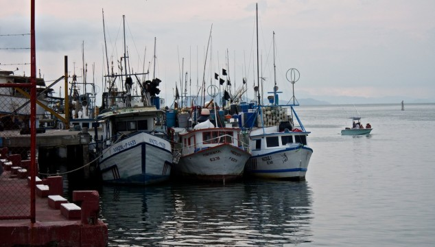 The main commercial fishing area in Puntarenas Costa Rica