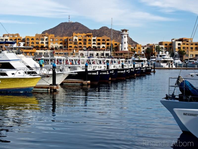 The Cabo San Lucas marina in Mexico