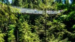 Capilano Suspension Bridge Challenges my Fear of Heights