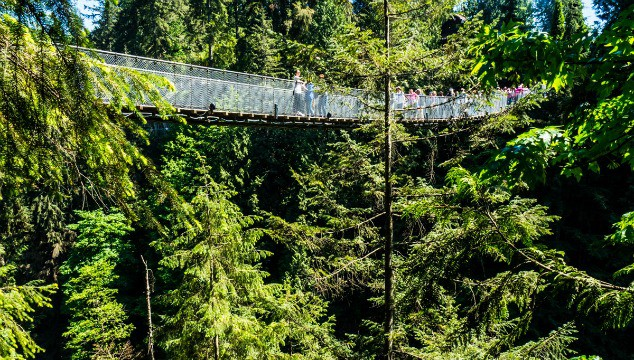The Capilano Suspension Bridge in Vancouver Canada