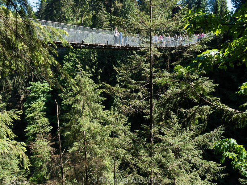 Standing 70 metres (230 feet) in the air, the 137m (450 feet) long Capilano Suspension Bridge appears near the tree tops. It's in Vancouver Canada