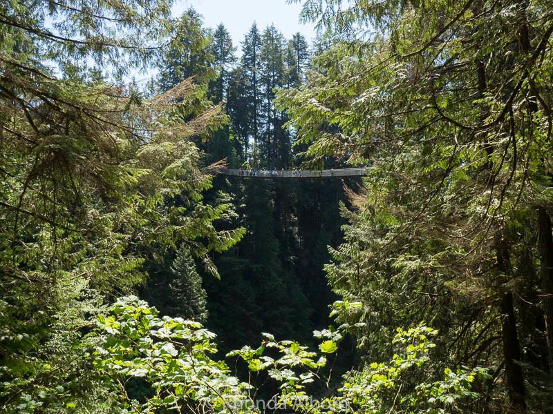 Another view of the Capilano Suspension Bridge