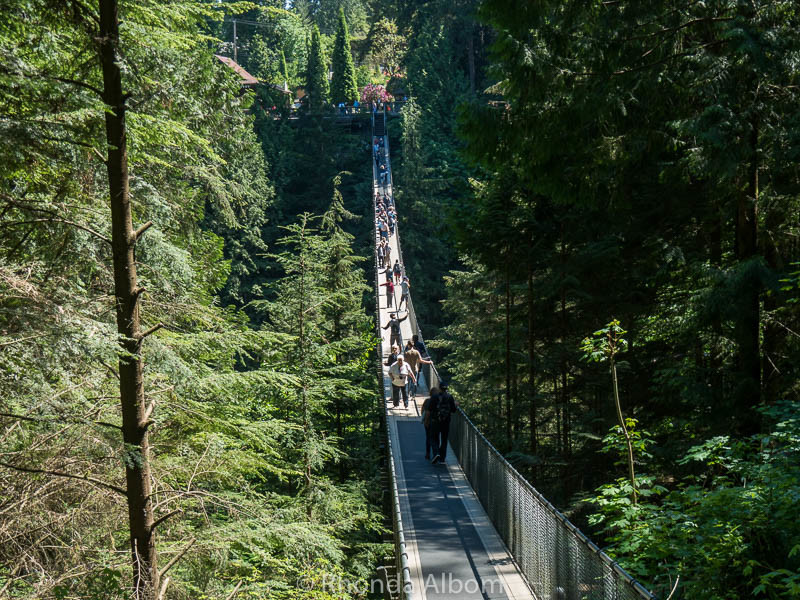 Capilano Suspension Bridge in Vancouver Canada