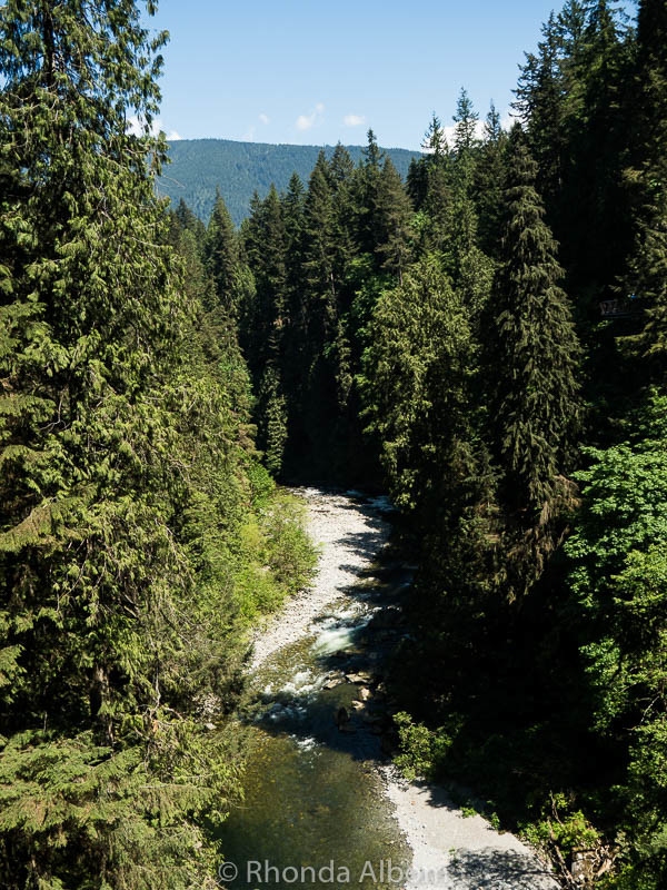 Looking down from the Capilano Suspension Bridge in Vancouver Canada