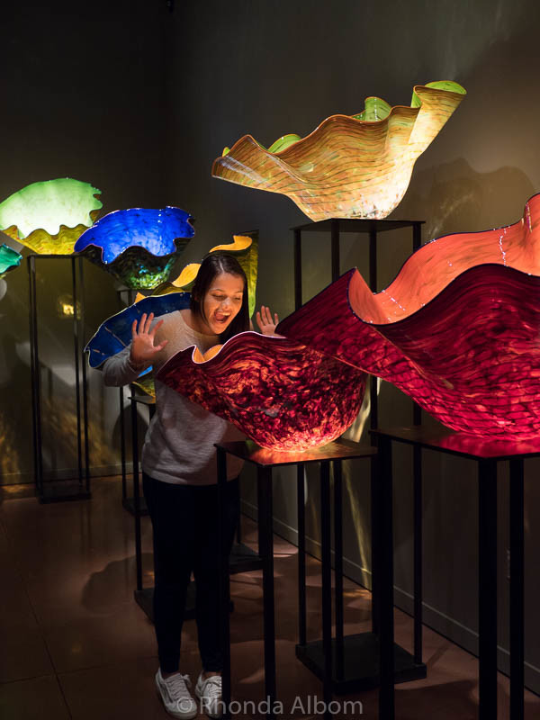 Macchai Forest at Chihuly Garden and Glass in Seattle Washington