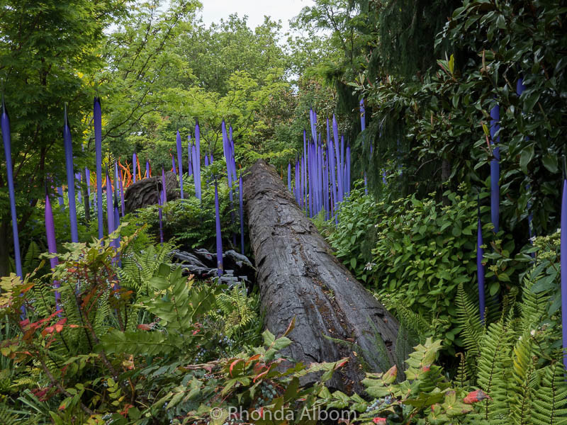 Outdoor Garden at Chihuly Garden and Glass in Seattle Washington