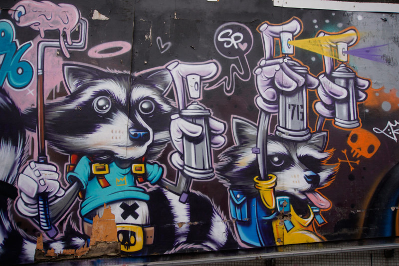 Racoon street art in Bristol UK