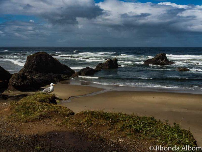 Beach between Yaquina and Newport along the Oregon coast highway.