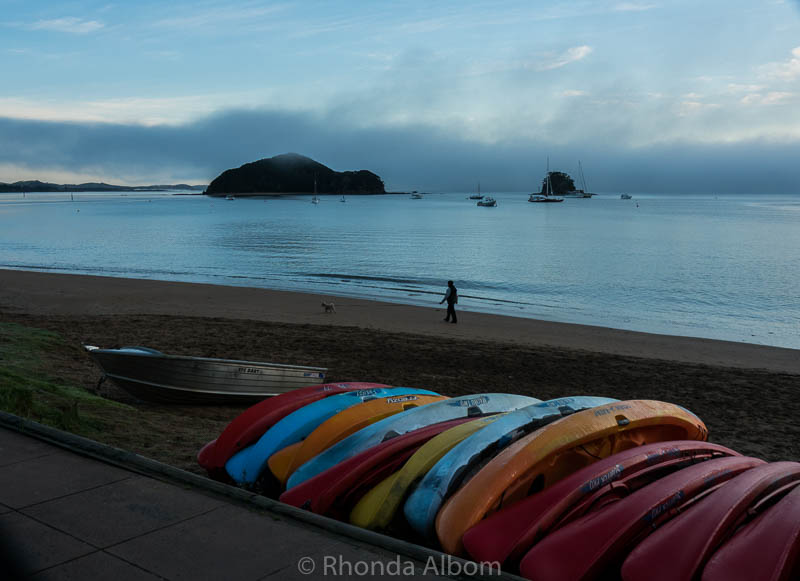 Kayaks on the beach in Paihia in the Bay of Islands, New Zealand