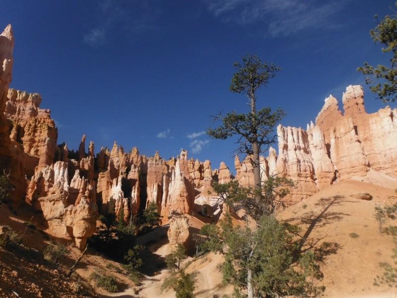 Bryce Canyon by Danielle Ditzian