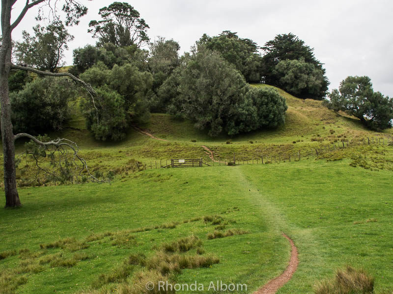Cornwall Park in Auckland New Zealand